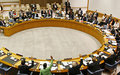 Security Council press statement on Libya, 20 June 2013