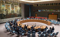 Security Council Press Statement on Libya